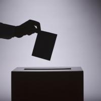 Законът допуска популизъм и злоупотреба с референдумите